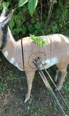 10 Best Archery target for the money (2019 Ultimate guide)